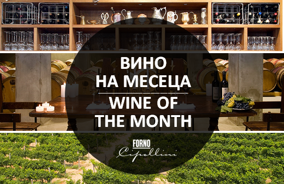 wine of the month